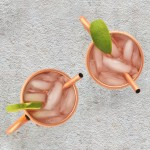 Moscow Mule Mugs Set of 2 Copper Mugs